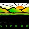 king-city-logo